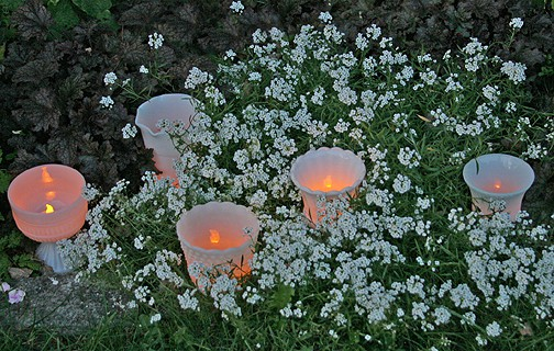 Elegant But Inexpensive Mood Lighting For weddings